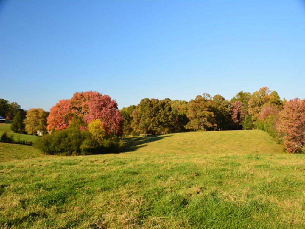 Cute Farm On Rolling Road : Scottsville : Albemarle County : Virginia