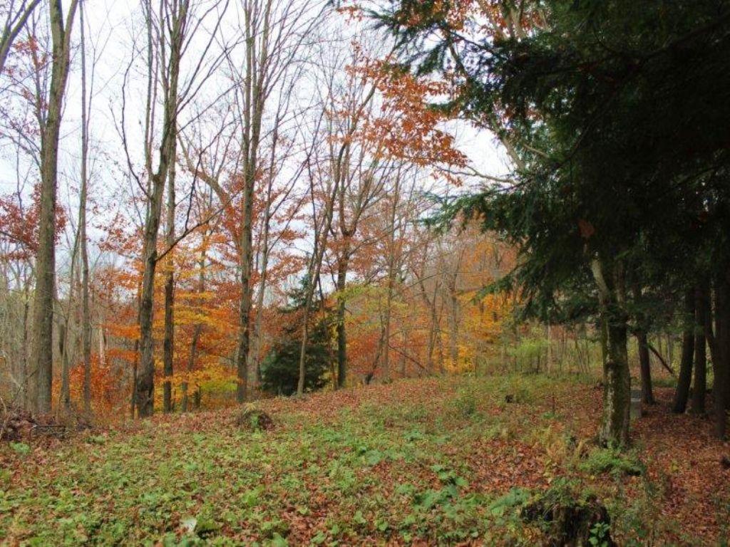 Land In Trenton With Storage Shed : Trenton : Oneida County : New York