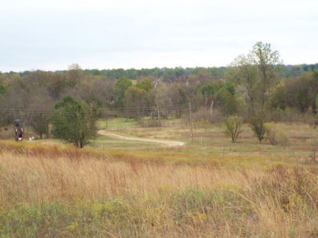 234.86± Acres- Excellent Hunting : Ratliff City : Carter County : Oklahoma