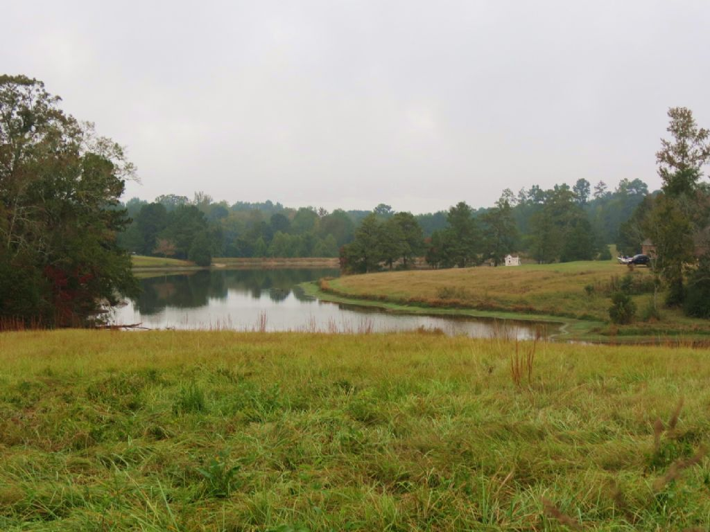 25 +/- Acres In Wesson : Wesson : Copiah County : Mississippi