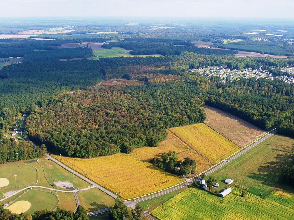 Multi-use Land Auction : Windsor : Isle of Wight County : Virginia