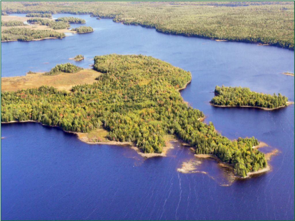 Second Lake Forest : Machias : Washington County : Maine