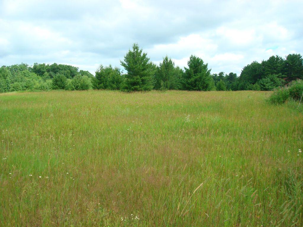 Commercial Acreage In Arbor Vitae : Arbor Vitae : Vilas County : Wisconsin