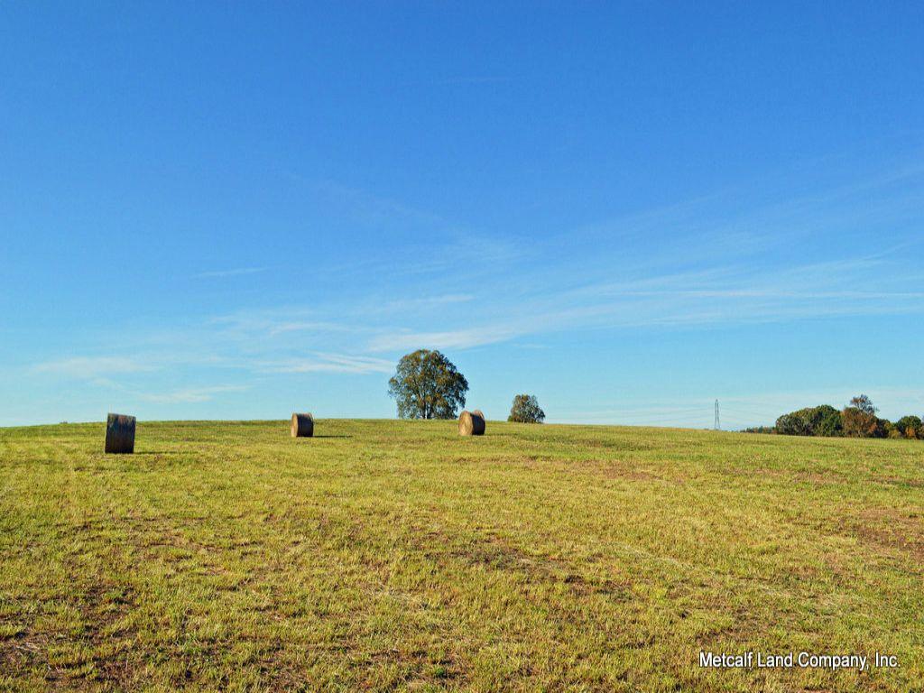 21 Acre Estate Site Near Woodruff : Woodruff : Spartanburg County : South Carolina