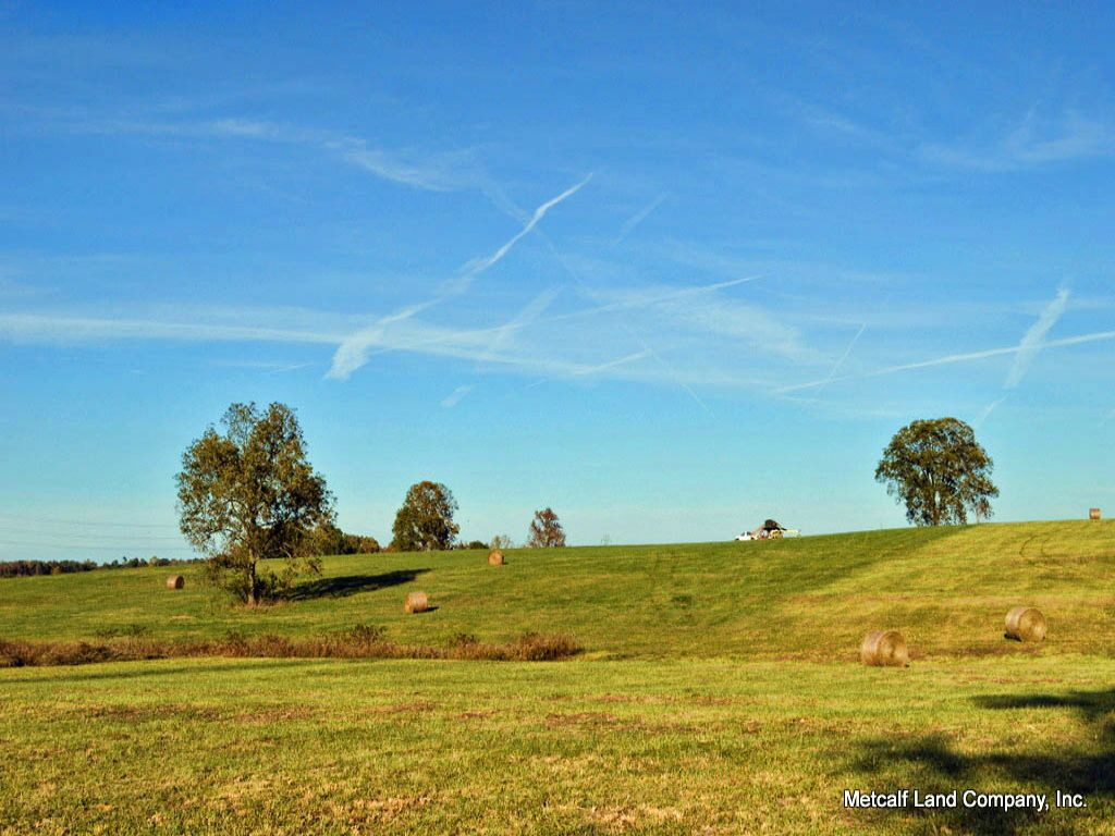 28 Acre Estate Site Near Woodruff : Woodruff : Spartanburg County : South Carolina