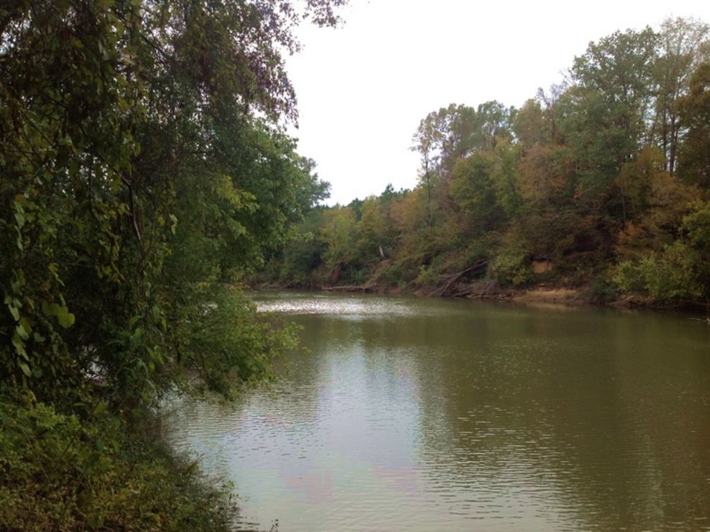 Cahaba River Tract : Marion : Perry County : Alabama