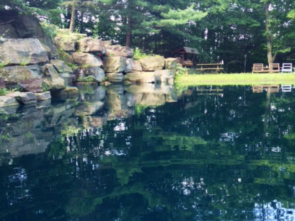 Cabin And Pond Finger Lakes Region : Prattsburgh : Steuben County : New York