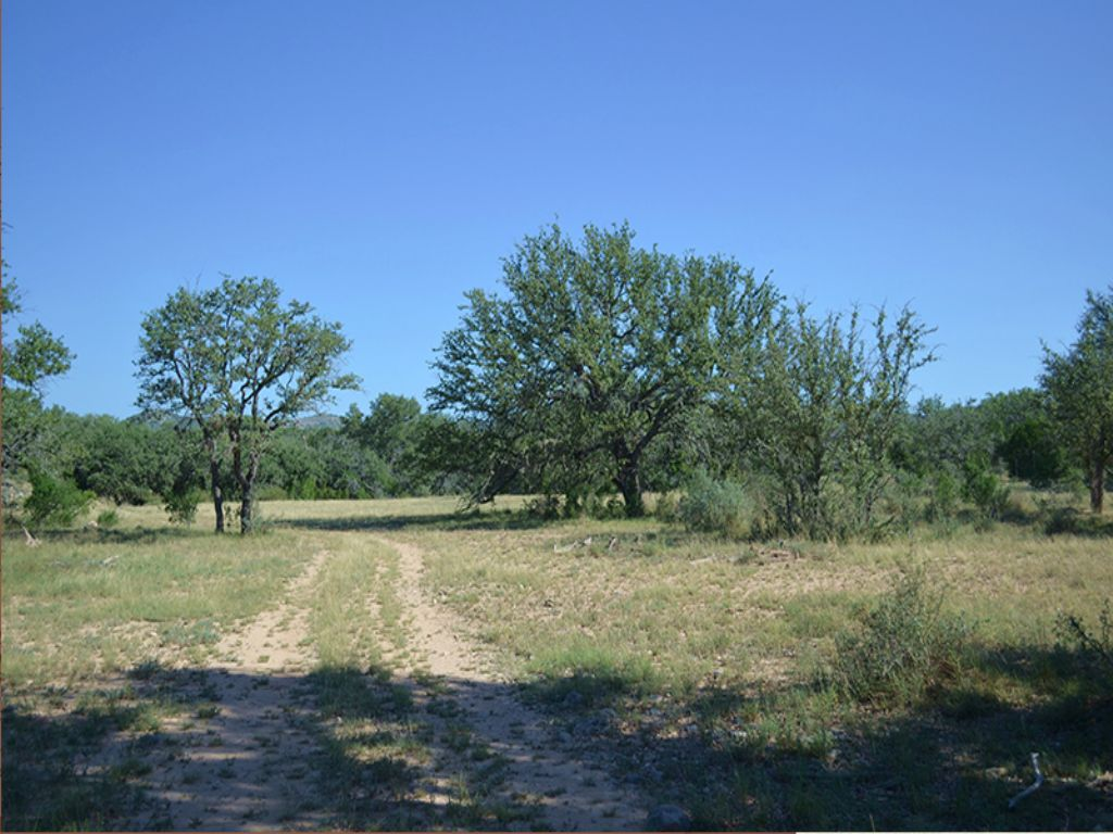 Sweeten Ranch : Camp Wood : Real County : Texas