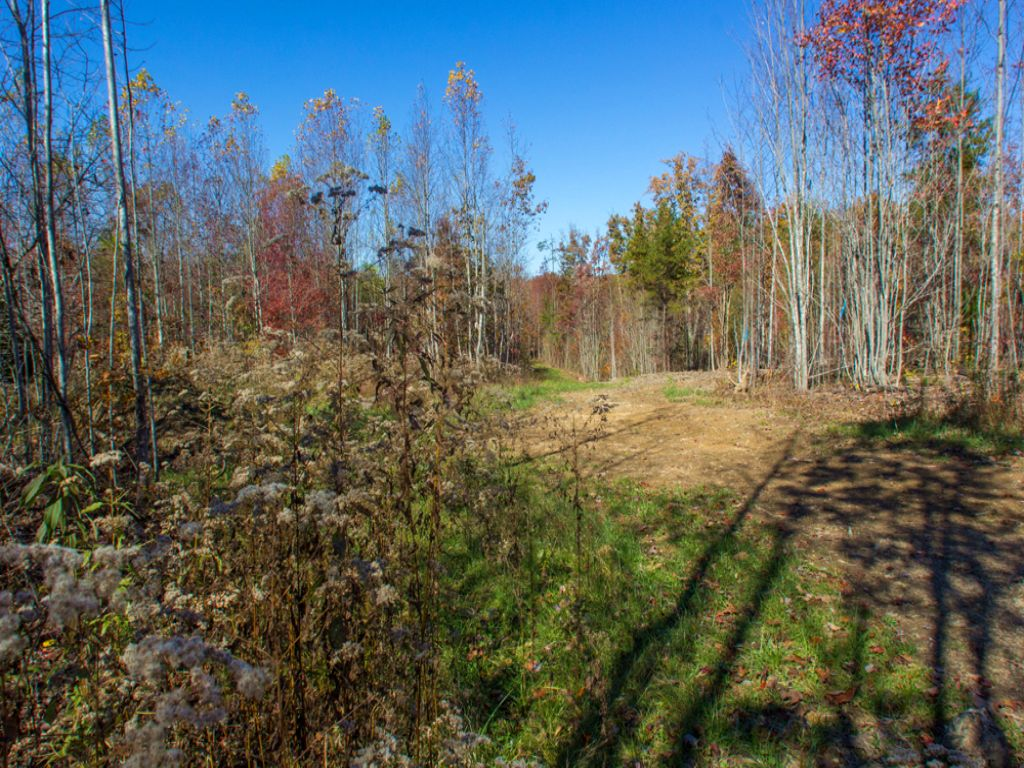 Tn Mountain Land Only $22,900 : Grandview : Rhea County : Tennessee