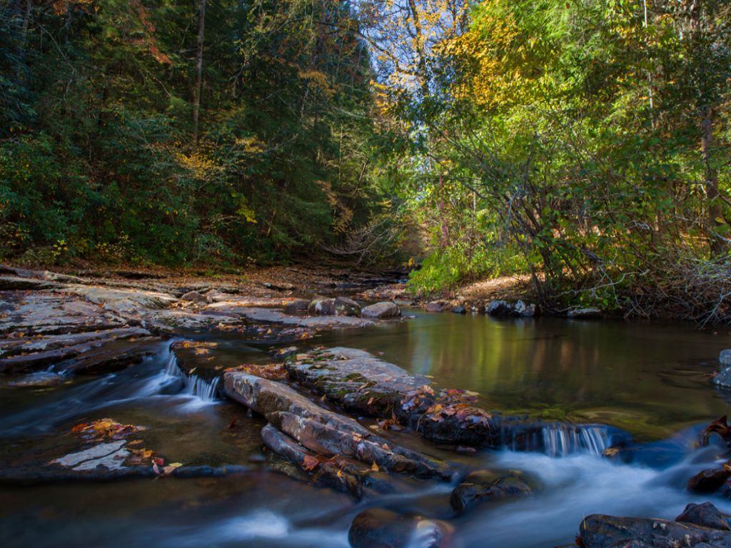 Cc: 20+ Acres With Creek & Views : Grandview : Rhea County : Tennessee