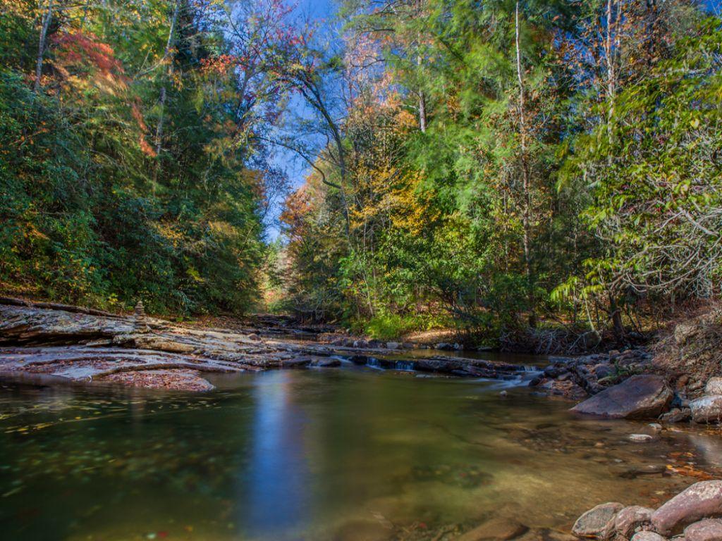 Mountain Creek & Views : Grandview : Rhea County : Tennessee