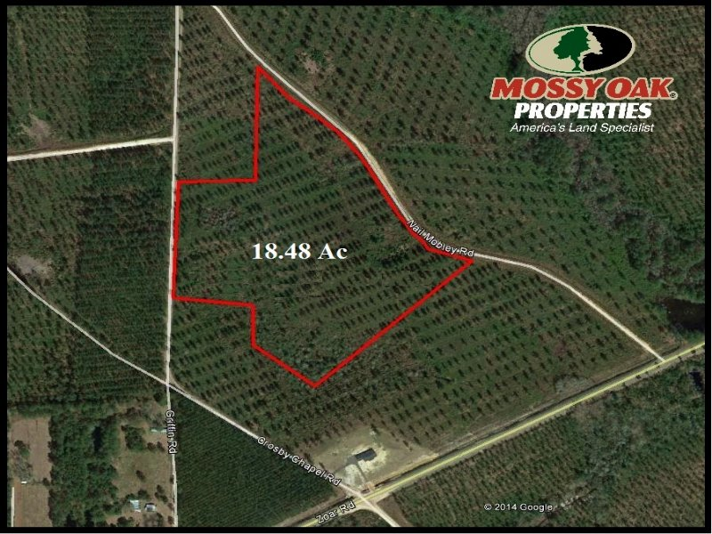 18.48 Acres Land For Sale : Baxley : Appling County : Georgia