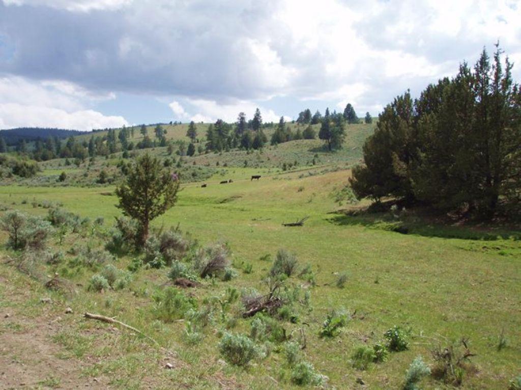 Pleasant Valley Alder Creek Ranch : Baker City : Baker County : Oregon