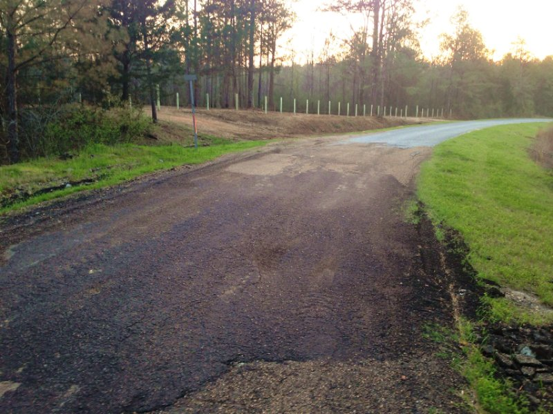 60 Acres Recreational Land : Port Gibson : Claiborne County : Mississippi