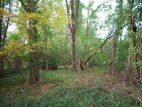 Residential / Recreational Tract : Carlisle : Union County : South Carolina