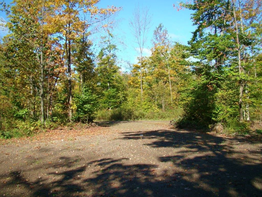 Cleared Building Site & Driveway : Lorraine : Jefferson County : New York