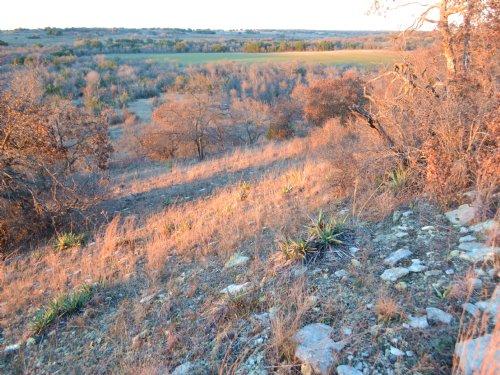 184.32 Acres With Beautiful Views : De Leon : Comanche County : Texas