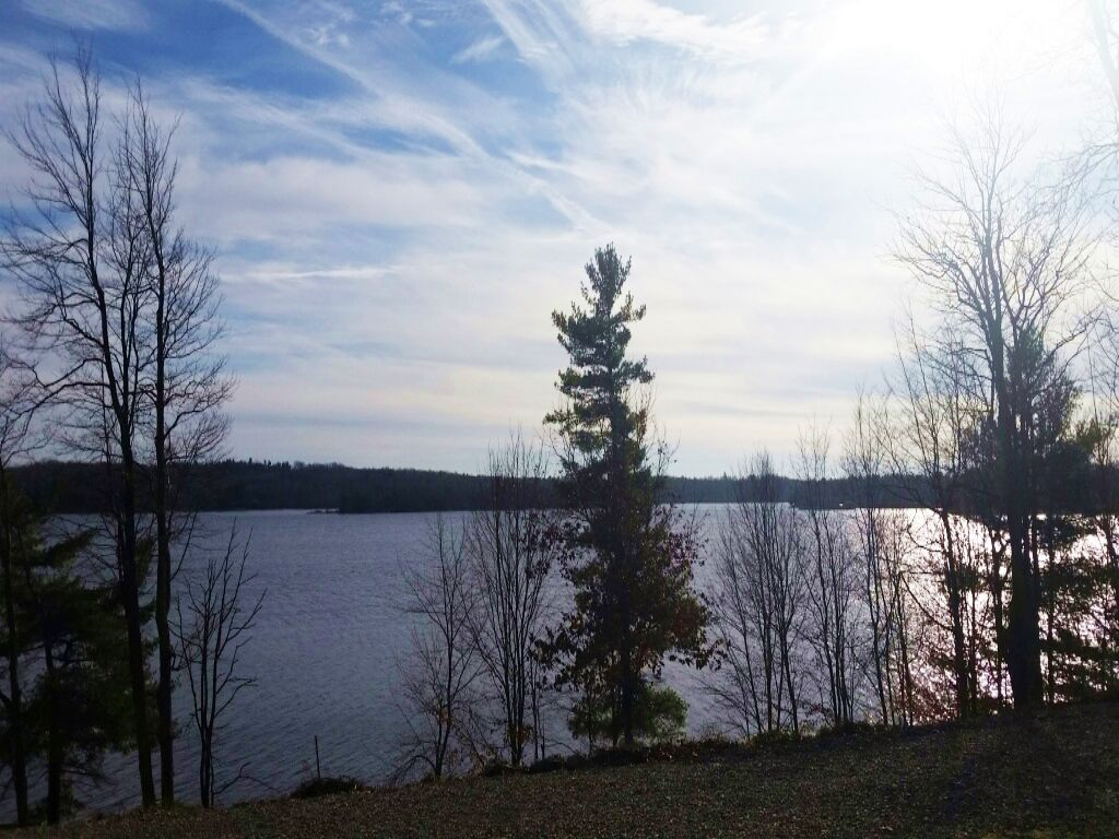 Land Borders Black Lake & Forest : Black Lake : Saint Lawrence County : New York