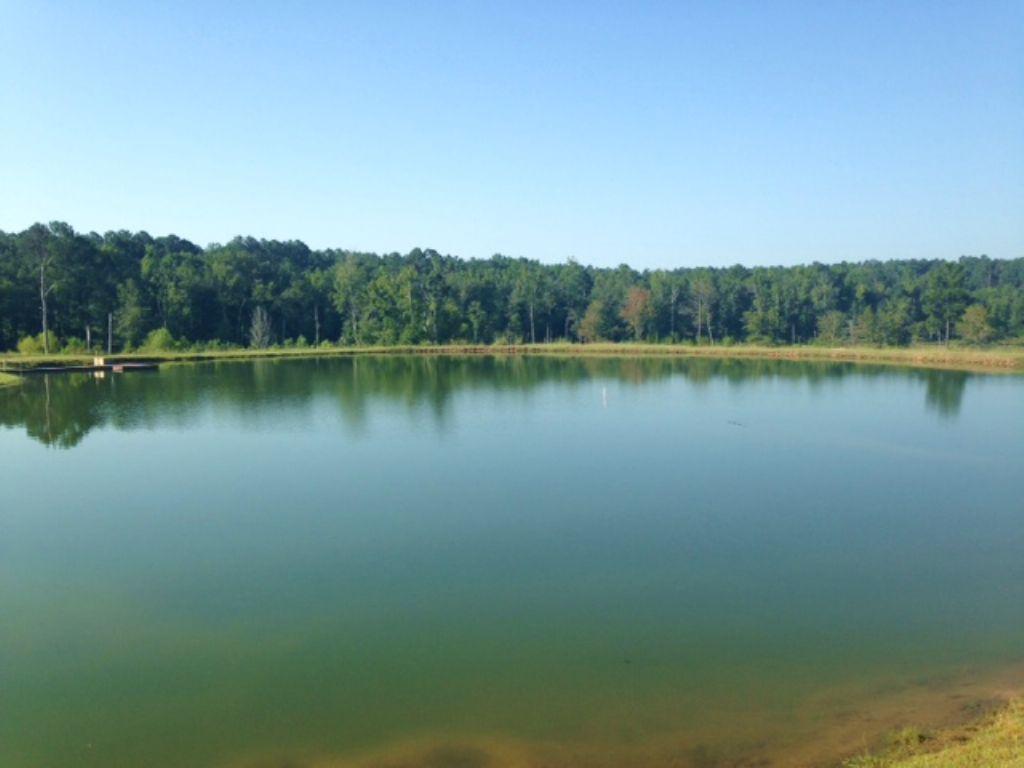 Sportsman's Retreat : Sparta : Hancock County : Georgia