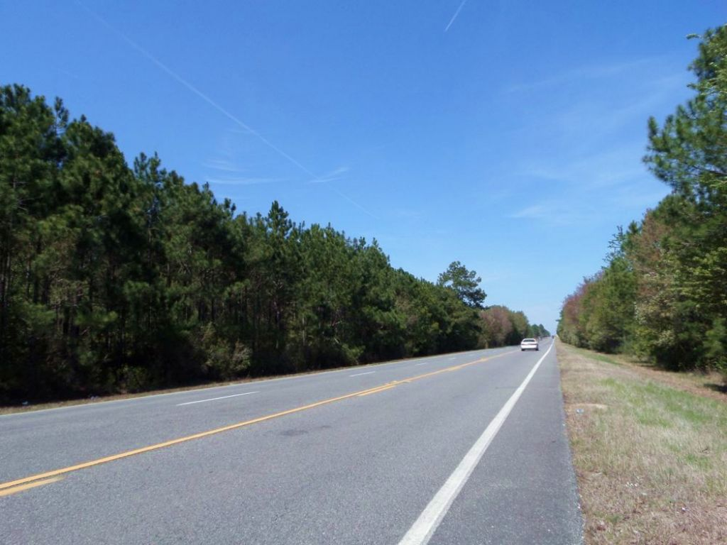 37 Acres With Pines & Highway Front : Jesup : Wayne County : Georgia
