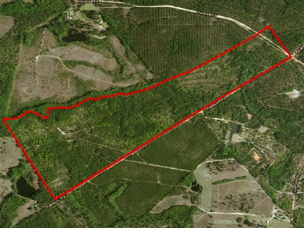 Rabitsch Rd Tract : Millen : Jenkins County : Georgia