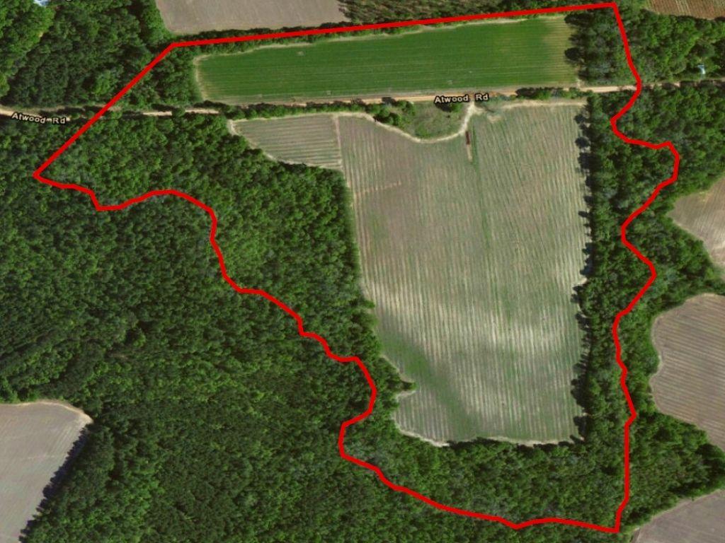 Atwood Farm : Statesboro : Bulloch County : Georgia