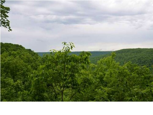 6 +/- Acres Beautful Bluff View : South Pittsburg : Marion County : Tennessee