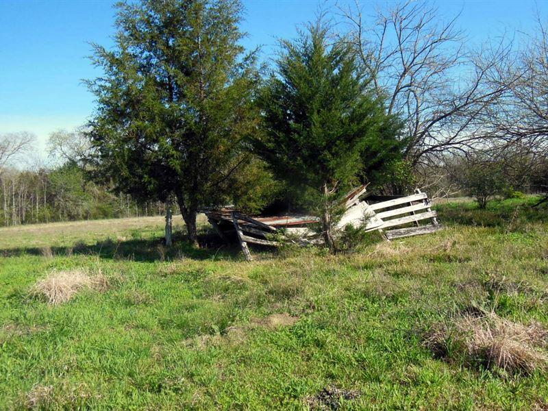 66-059 Pine Apple Farm : Furman : Wilcox County : Alabama