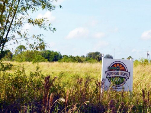 Shinn Road Acres : Fort Pierce : Saint Lucie County : Florida