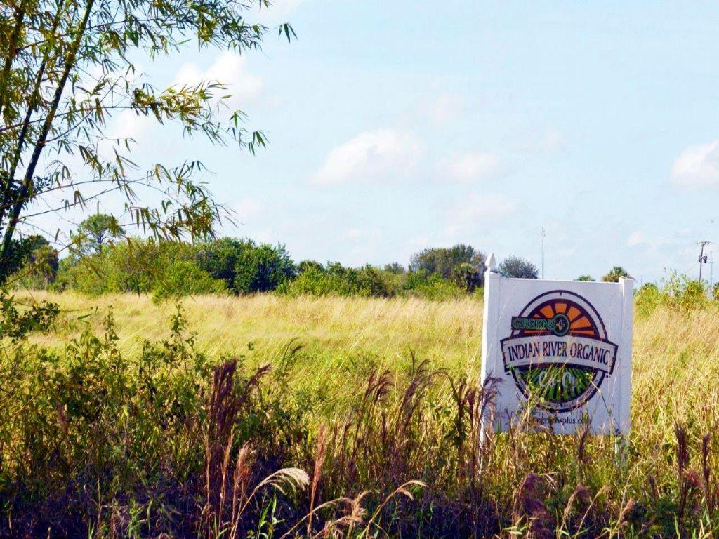 Shinn Road Acres : Fort Pierce : Saint Lucie County : Florida