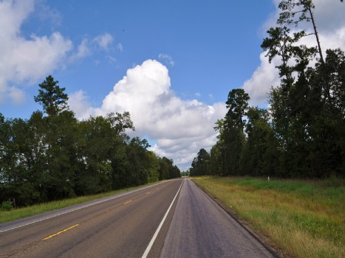 432 Acres Highway 146 : Rye : Liberty County : Texas
