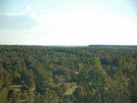 Canyon Milagro 9