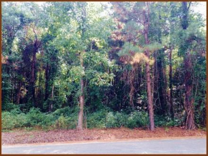 8.02 Oktibbeha- Residential Lots : Starkville : Oktibbeha County : Mississippi