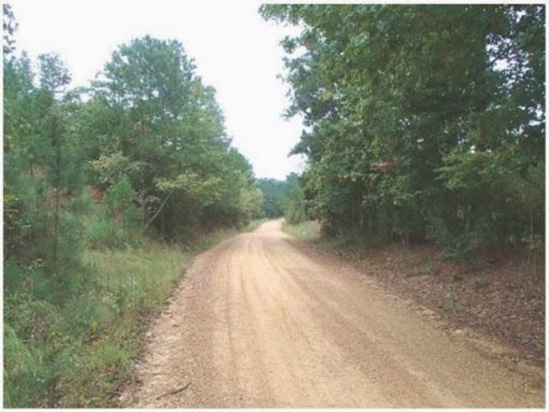 55.9 Acres In Choctaw County, Missi : Mccool : Choctaw County : Mississippi