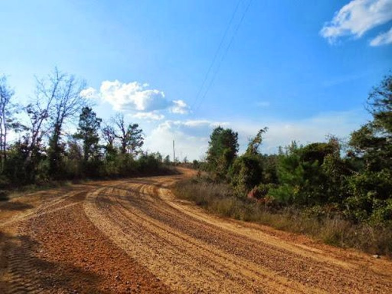 75.1 Acres In Attala County, Missis : Mcadams : Attala County : Mississippi