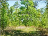 120 Acres Fishing Land, Hunting