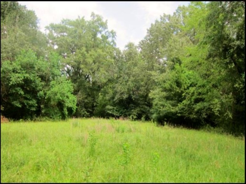 36 Acres In Hinds County, Mississip : Clinton : Hinds County : Mississippi