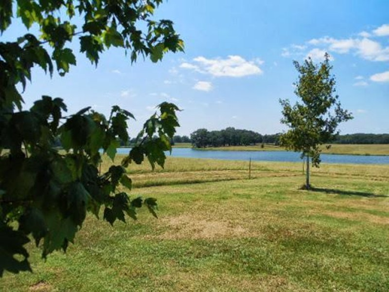 370 Acres In Hinds County, Mississi : Raymond : Hinds County : Mississippi