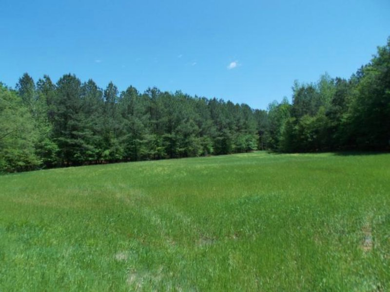 1500 Acres In Carroll County, Missi : Carrollton : Carroll County : Mississippi