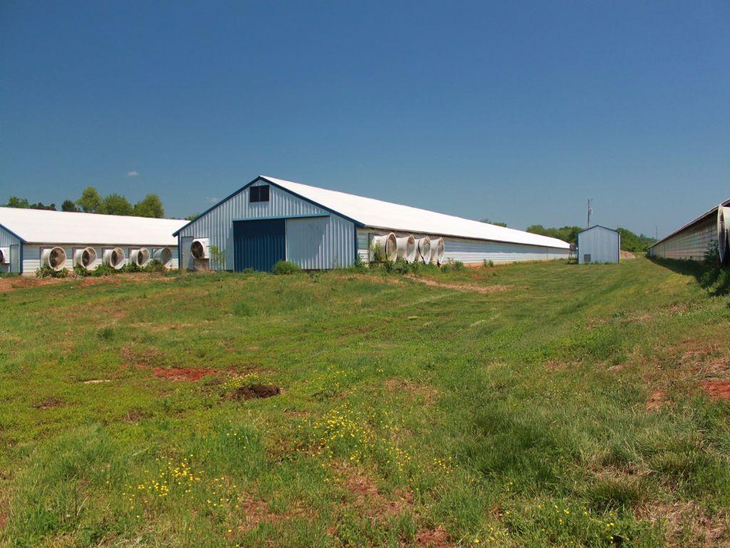 48± Acre Poultry Farm For Sale : Bowling Green : Warren County : Kentucky
