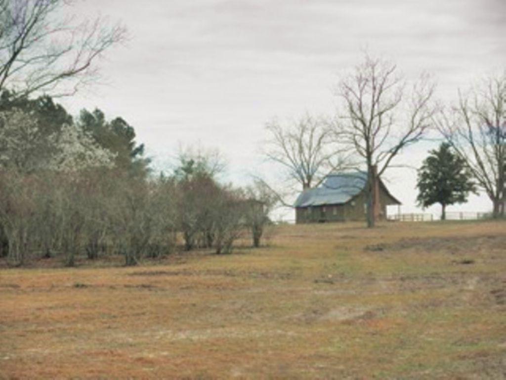 Thomas Farms : Adrian : Emanuel County : Georgia
