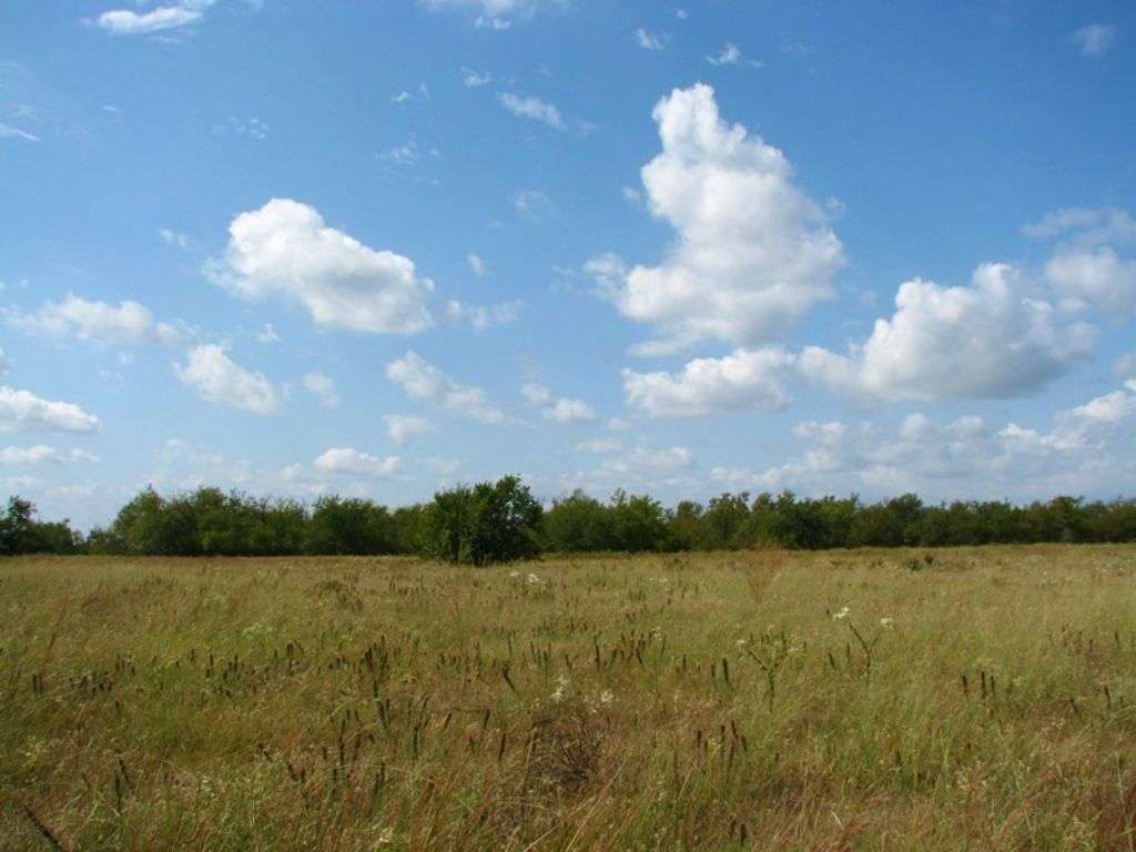 Osage Prairie Tract 3 : Soper : Choctaw County : Oklahoma