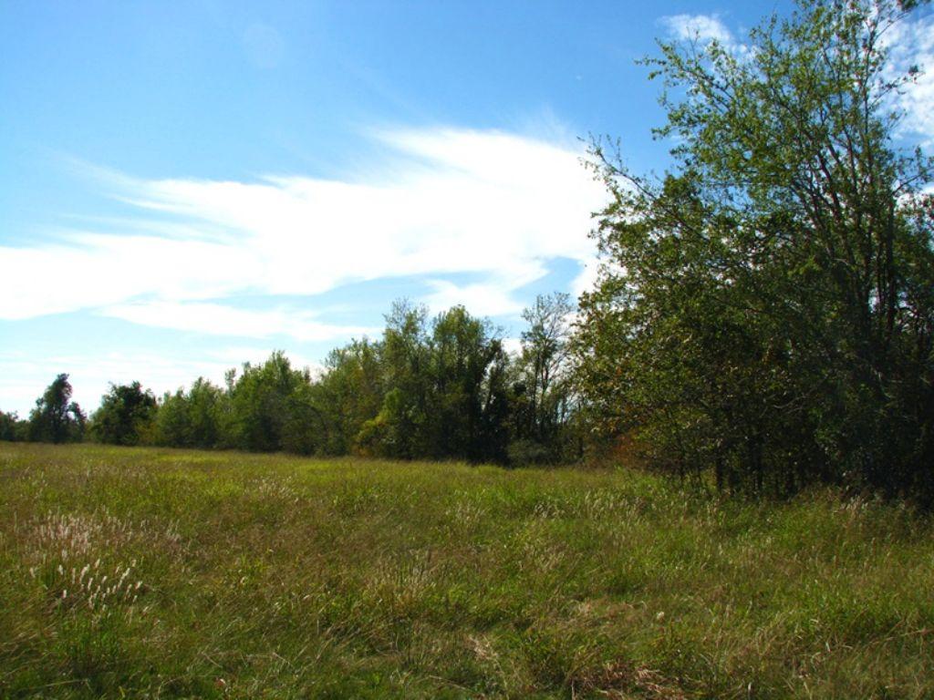 Osage Prairie Tract 5 : Soper : Choctaw County : Oklahoma