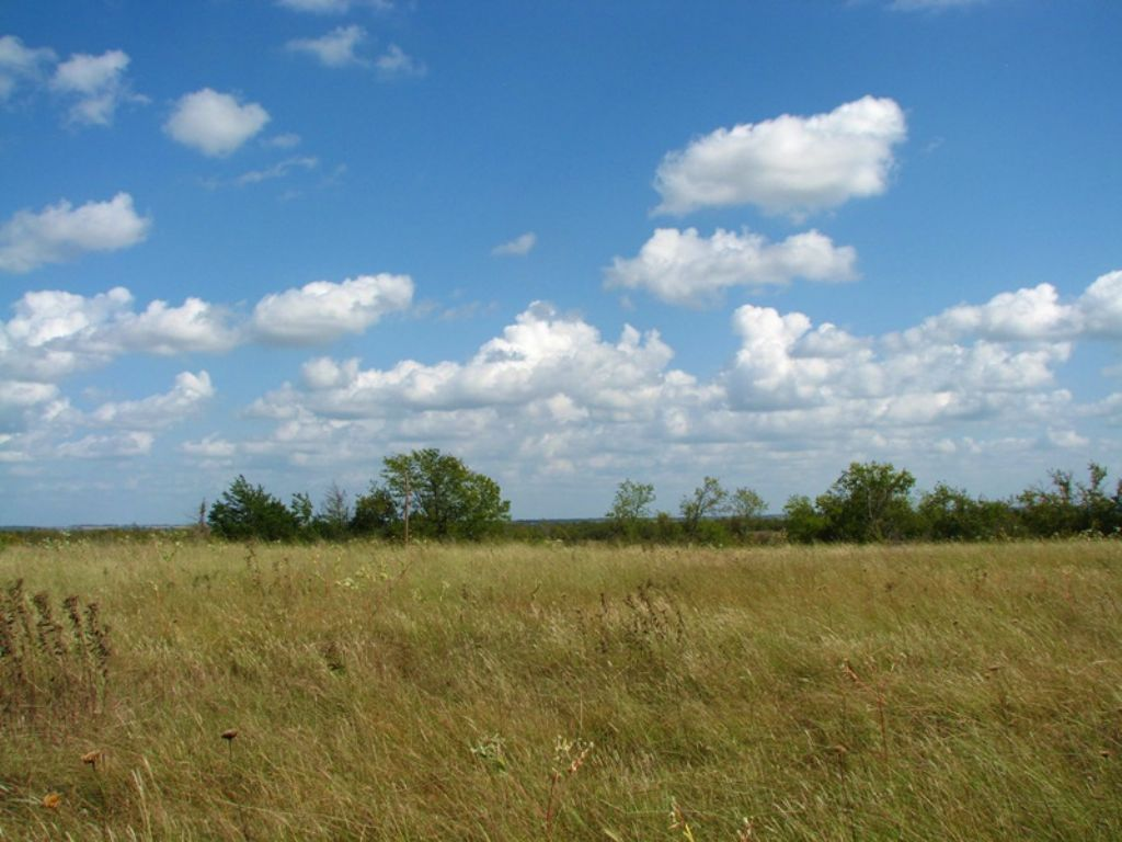 Osage Prairie Tract 8 : Soper : Choctaw County : Oklahoma