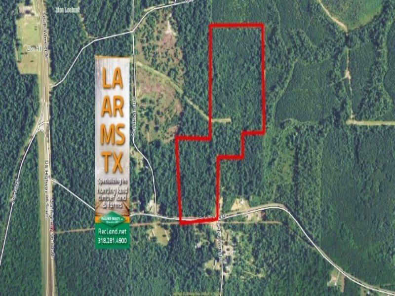 33 Acres Residential Land, Hunting : Jasper : Jasper County : Texas
