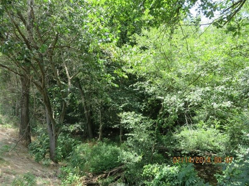 15.45 Ac - Wooded Home Site Tract : Marshall : Harrison County : Texas