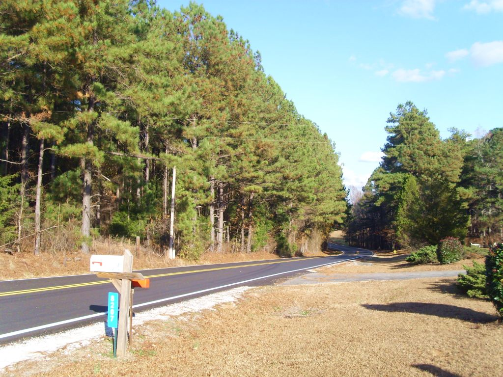 Cook Tract : West Of Lanett : Chambers County : Alabama