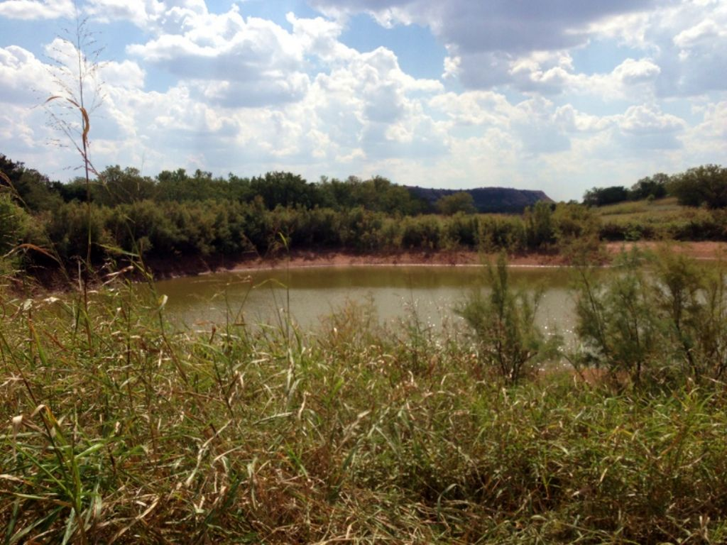 Auction: 160 Acres - Hunting Cabin : Waynoka : Major County : Oklahoma