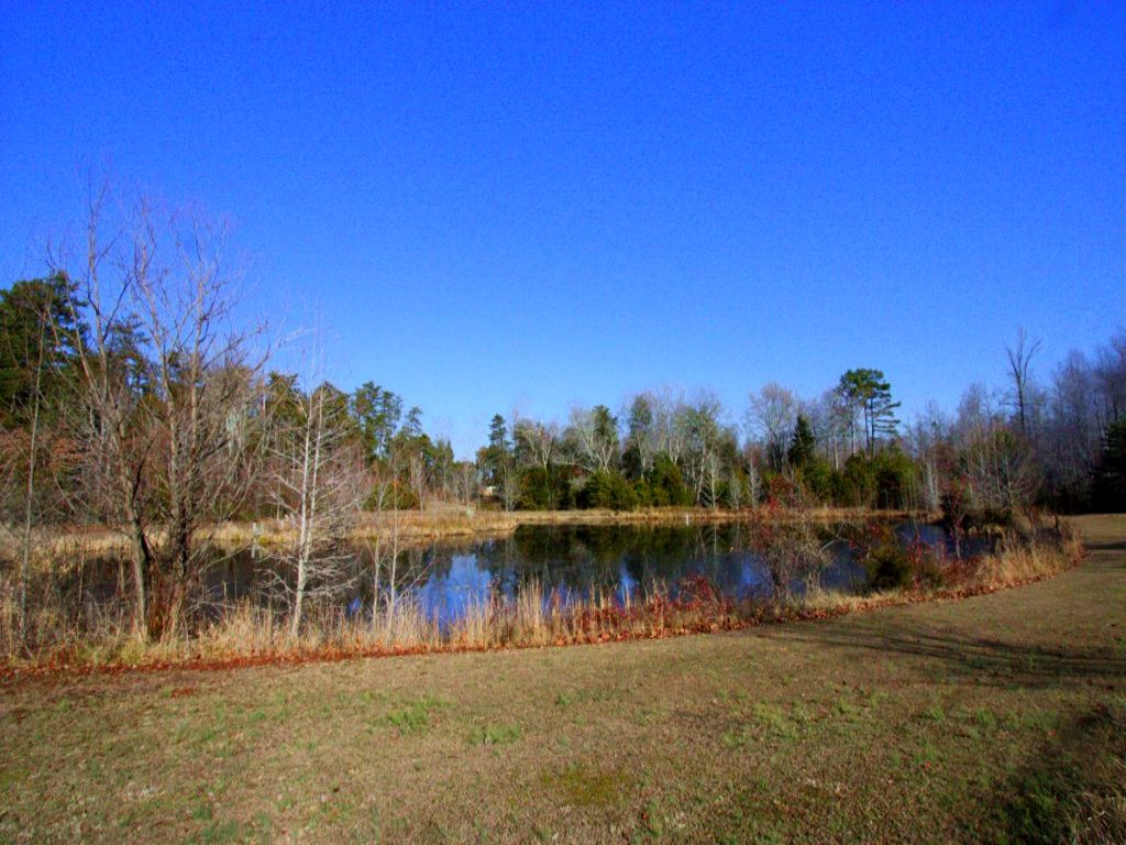 123.05 Acres In Multiple Parcels : Sandy Hook : Goochland County : Virginia