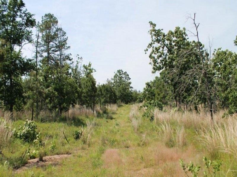 11.77 Acres Indian Ridge Ii : McAlester : Pittsburg County : Oklahoma